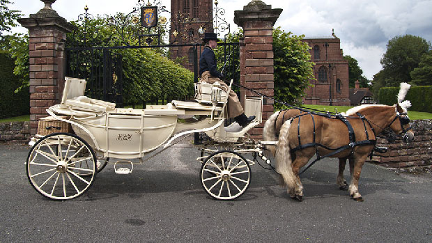Stunning Horse & Carriage for your wedding